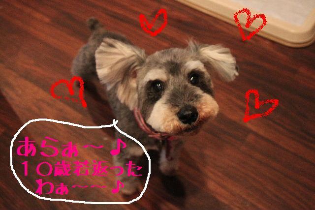こんばんわ!!_b0130018_121041.jpg