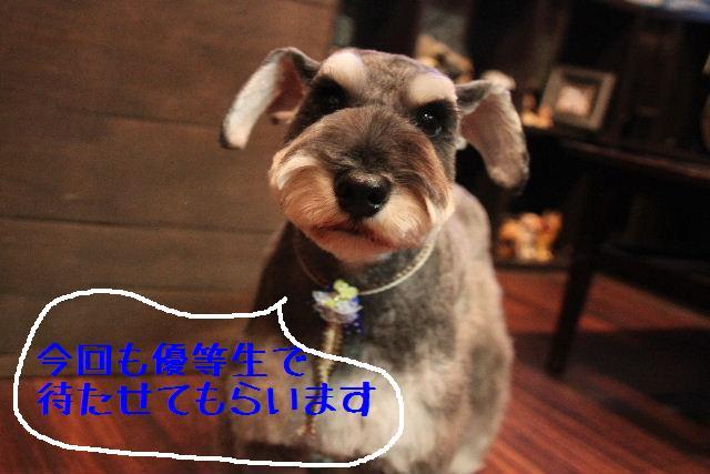 こんばんわ!!_b0130018_1245361.jpg