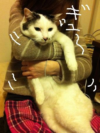 豆福とかのこちゃんから_a0064067_20421966.jpg