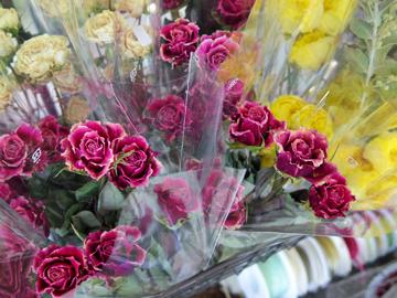 今月の花材コーナー♪_d0167088_10104642.jpg