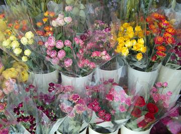 今月の花材コーナー♪_d0167088_9583433.jpg