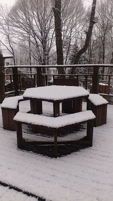 雪?_e0079589_1223274.jpg
