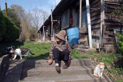炭住の猫_f0173596_8111324.jpg