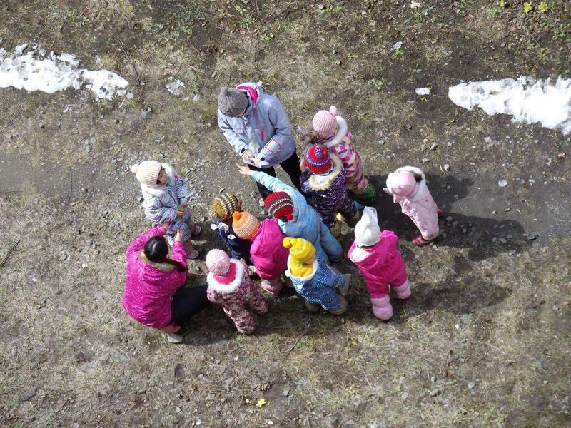 今年最初の開花とフキノトウ狩り_c0025115_19591384.jpg