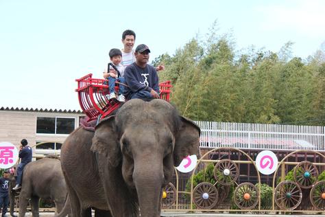 象の国_c0204724_147378.jpg