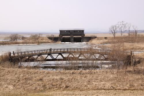 湿原あふれる 4月11日_f0113639_15535427.jpg