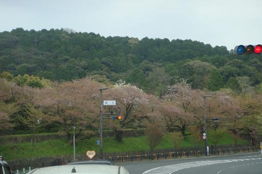 京都〜〜!_e0226943_2335237.jpg