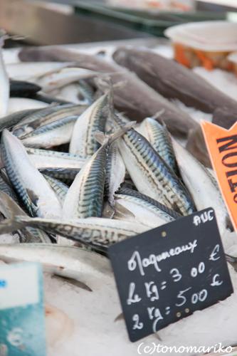 海沿いのマルシェの魚たち_c0024345_4521561.jpg