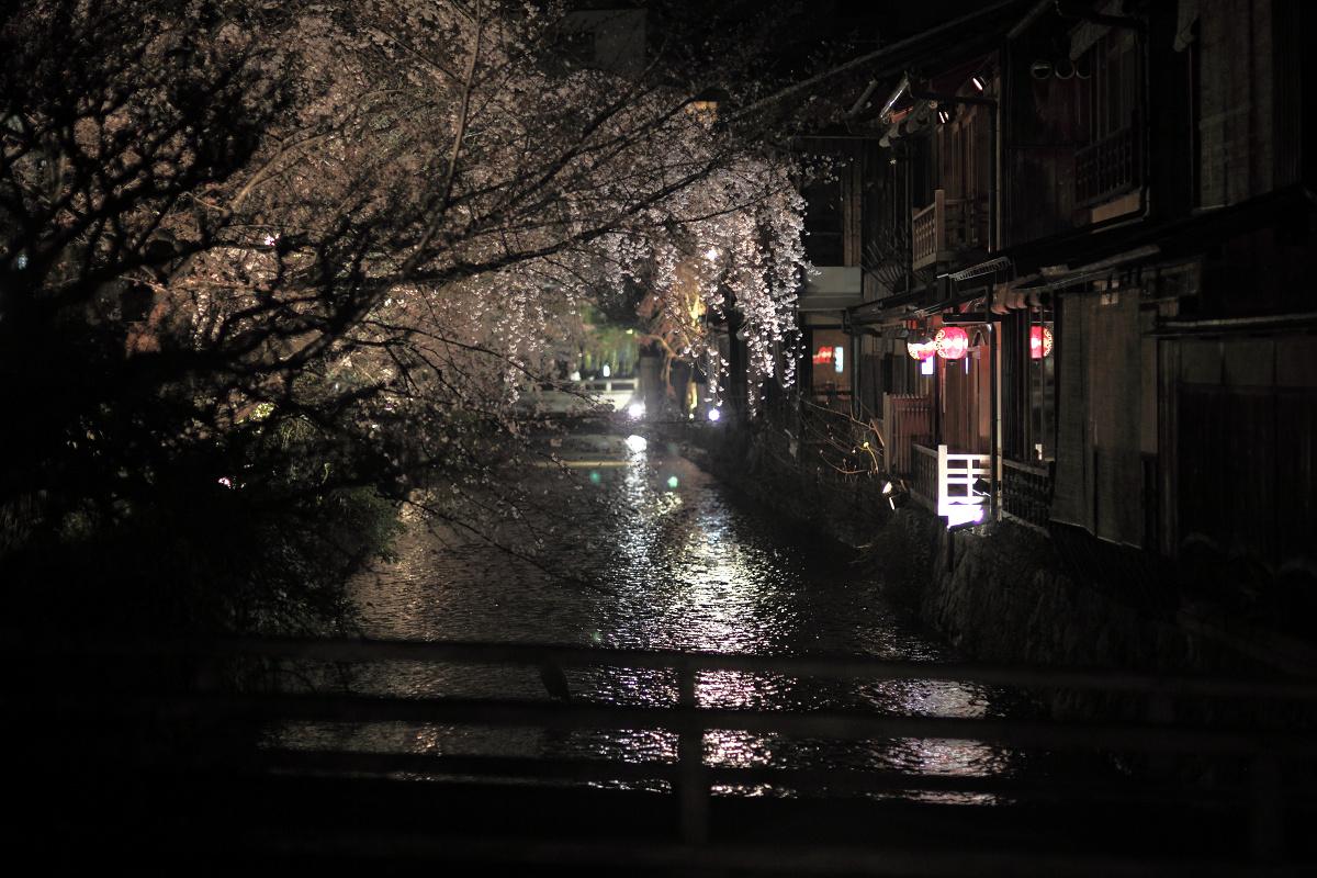 桜 2013 <京都 祇園白川> _f0021869_22404518.jpg