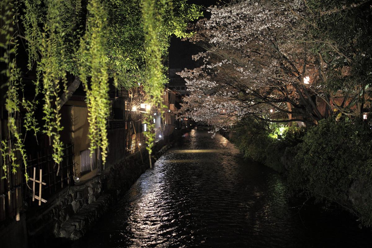 桜 2013 <京都 祇園白川> _f0021869_22411320.jpg