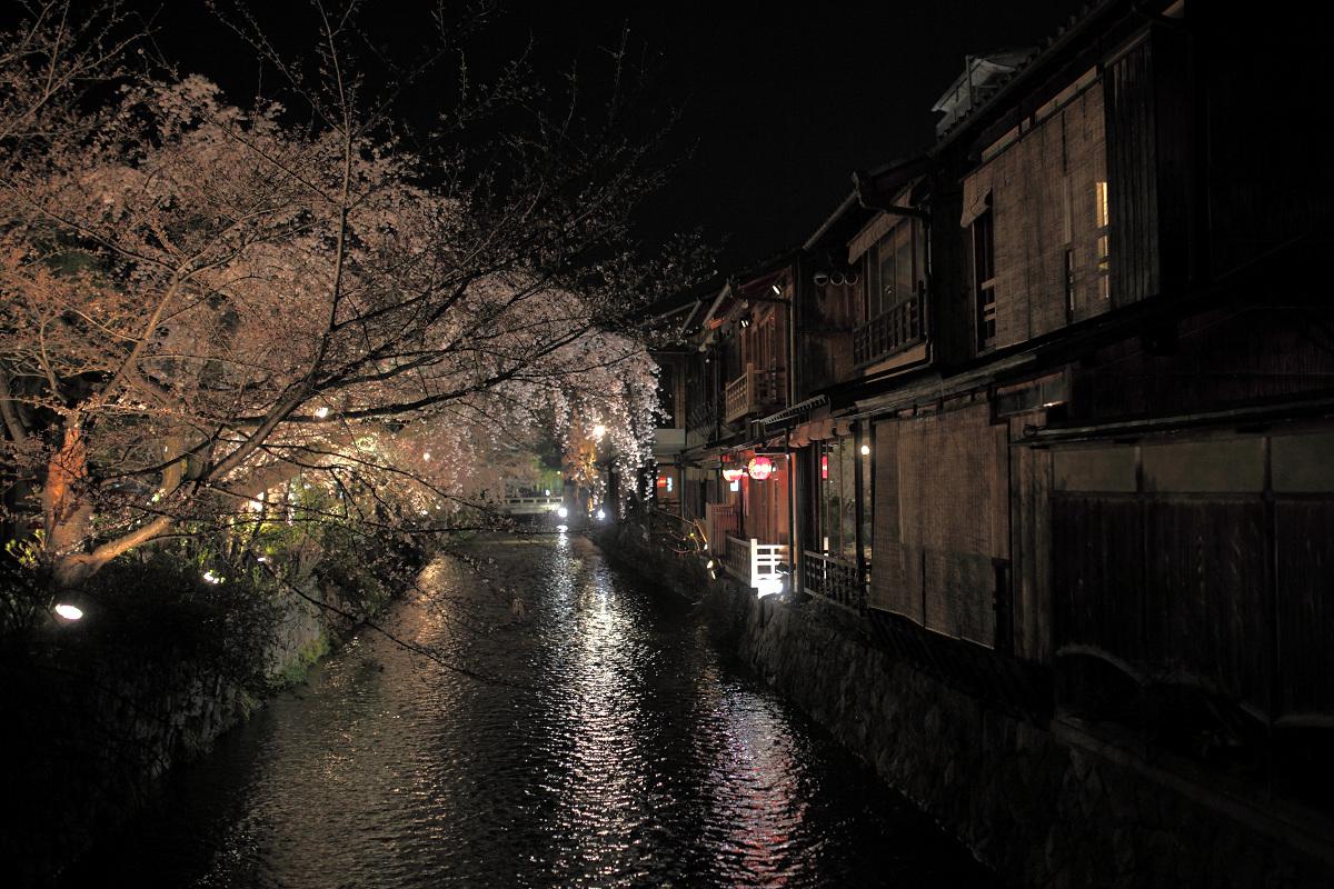 桜 2013 <京都 祇園白川> _f0021869_2241229.jpg