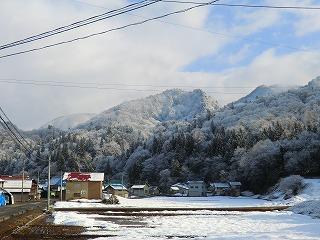 今朝も雪・・・_d0122374_7283436.jpg