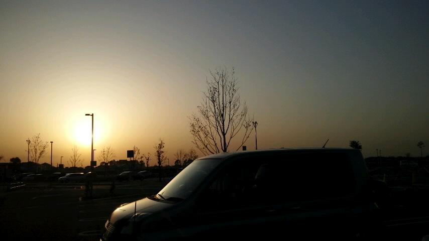 逆光〈夕〉_f0155808_10221599.jpg