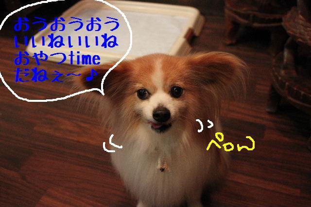 こんにちわぁ~♪_b0130018_10463570.jpg