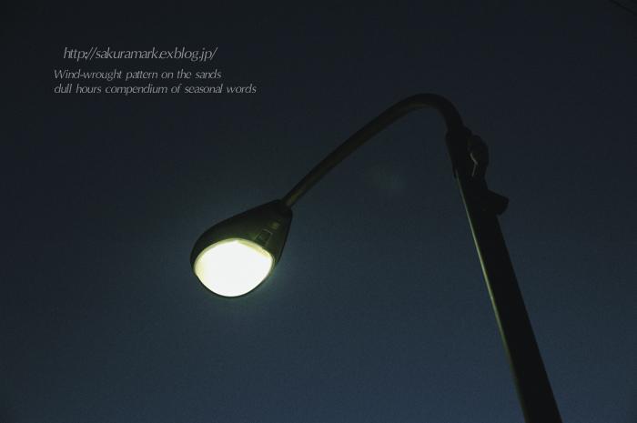 蒼白く、孤独に・・・。_f0235723_18563758.jpg