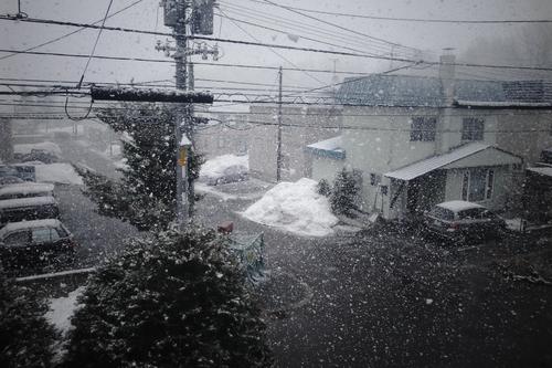 札幌市は積雪ゼロ宣言なんだけど。_c0051132_20144395.jpg