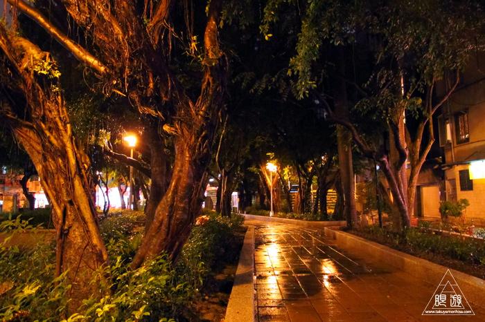 170 台北 ~すごい街路樹~_c0211532_21293886.jpg
