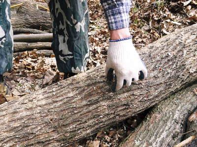 原木しいたけのコマ打ち作業やってみました(株式会社旬援隊編その2)_a0254656_1839214.jpg