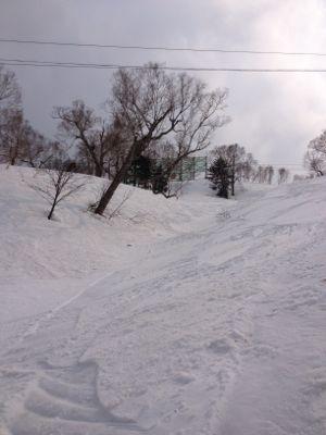 北海道8日目☆ サッポロ国際スキー場_c0151965_18211191.jpg