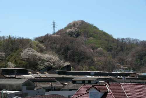 ズリ山の春_f0173596_2103994.jpg