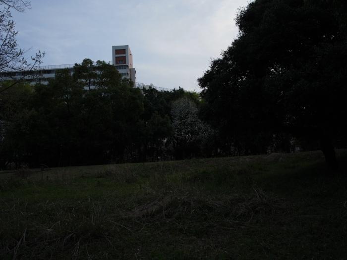f0175998_047450.jpg