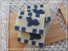 手作り石鹸イブンシーナさん_a0275527_140295.jpg