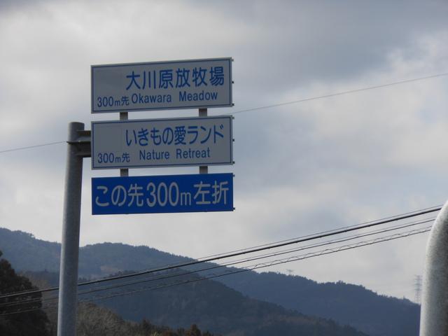 今朝の地震のせいでネタ探しに行けなかったよというネタ_c0001670_19334886.jpg
