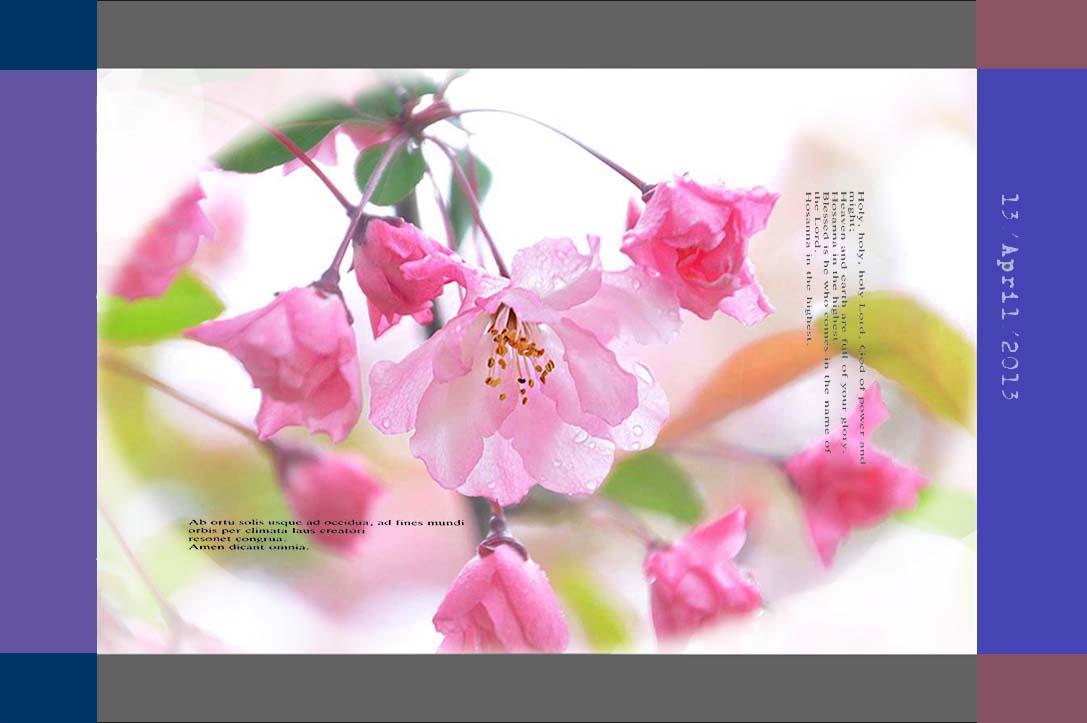 f0198771_033476.jpg