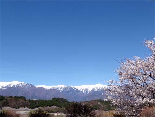 春の雪_a0224382_131827.jpg