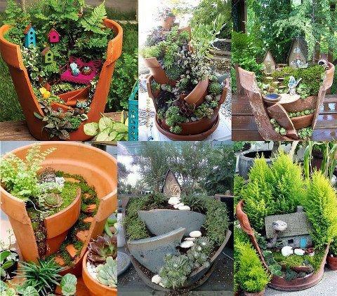 植物・庭の世界 57_f0213189_1134980.jpg