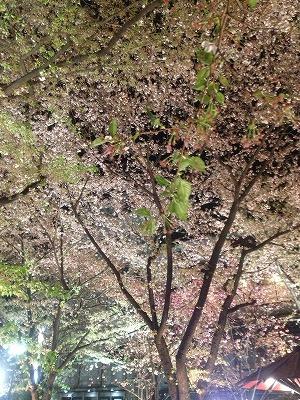 京都一泊♪ その②_f0116812_932660.jpg