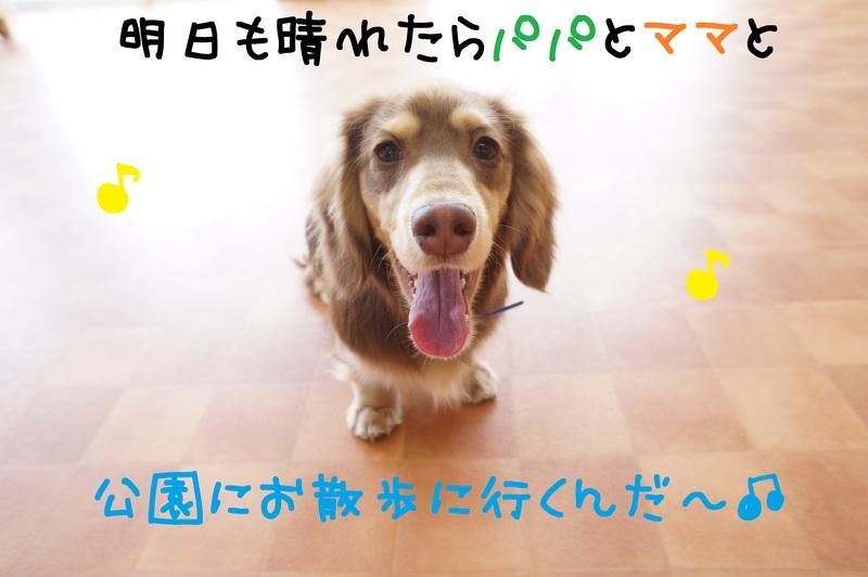 d0220513_1842369.jpg