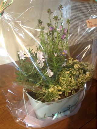 お花gift。○_c0173939_12524282.jpg