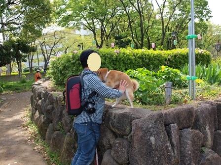 4柴で浮間公園散歩_b0080342_21373715.jpg