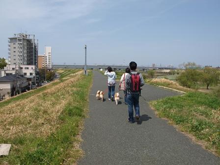 4柴で浮間公園散歩_b0080342_2140240.jpg