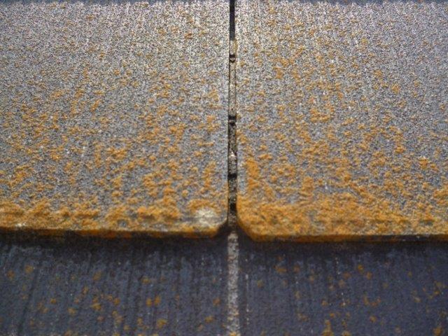 屋根・外壁の塗替えを始めています(神奈川県秦野市)_e0207151_6461073.jpg