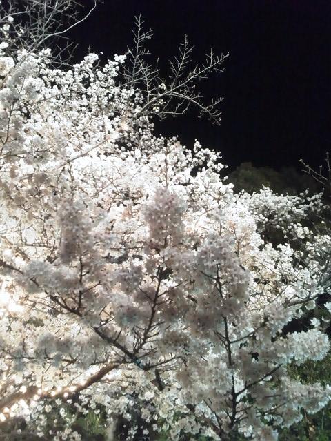 d0024277_2112537.jpg