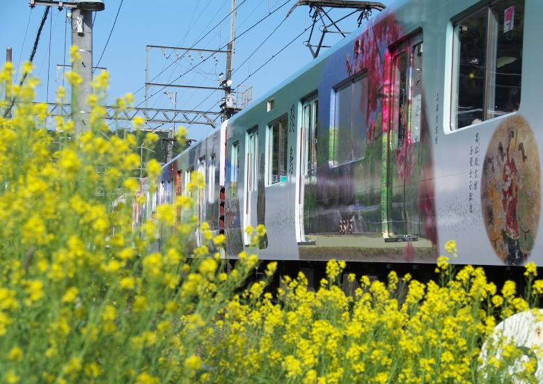 近鉄吉野線ラッピング電車_f0266284_253597.jpg