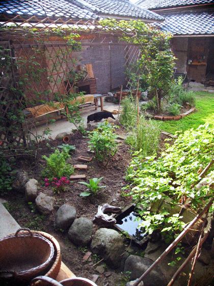 新緑の中庭で朝ごぱん、昼ごはん。_d0077603_941548.jpg