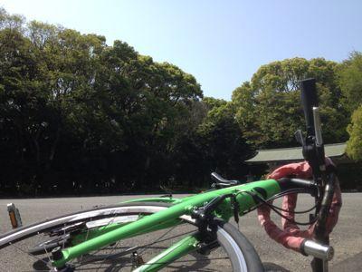 今日は緑を感じようとしまして_d0242009_22242548.jpg