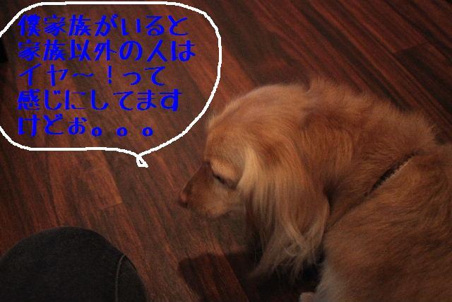 b0130018_2244041.jpg