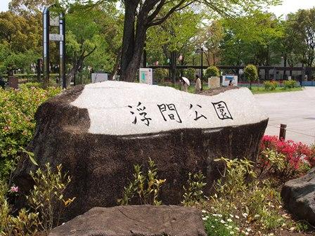 4柴で浮間公園散歩_b0080342_1747353.jpg