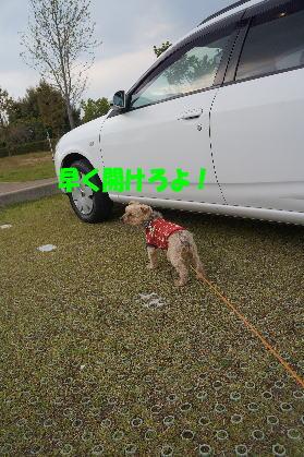 d0013645_14455187.jpg