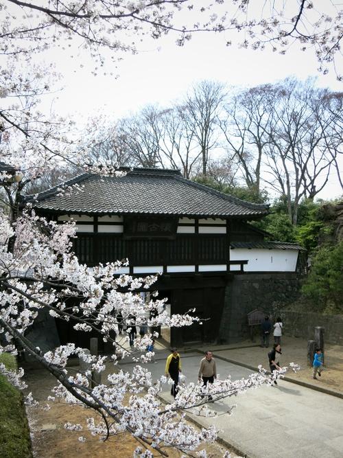 小諸の桜❤懐古園周辺散策_f0236260_18114851.jpg