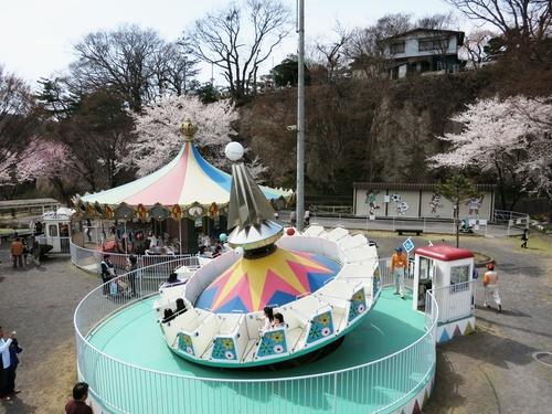 小諸の桜❤懐古園周辺散策_f0236260_18165783.jpg