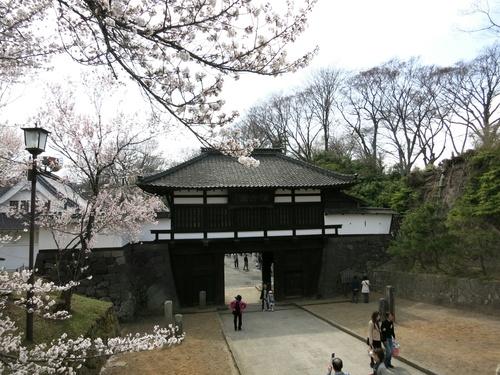 小諸の桜❤懐古園周辺散策_f0236260_19361754.jpg