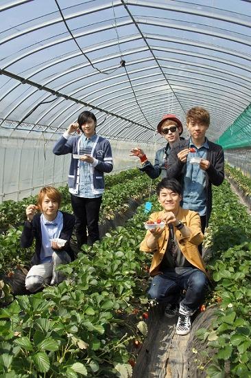 SHU-I 人生初のイチゴ狩りをファンと体験!_e0197970_14554079.jpg