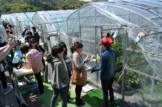 SHU-I 人生初のイチゴ狩りをファンと体験!_e0197970_14563589.jpg