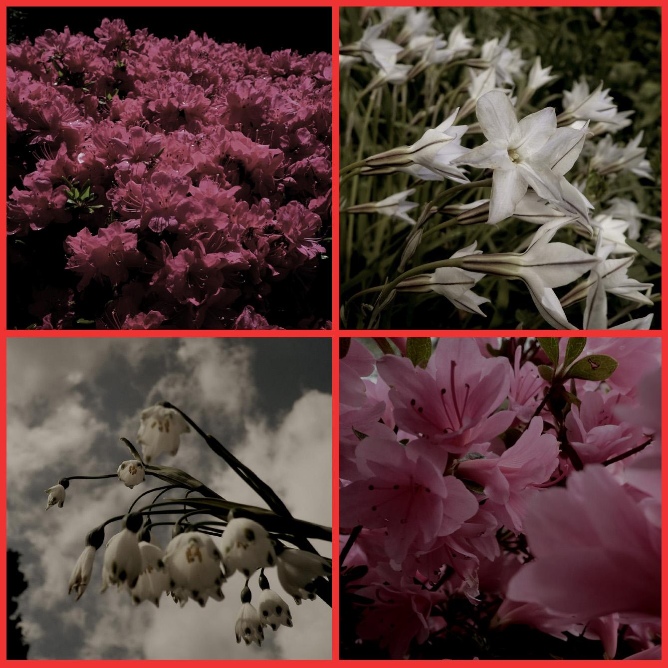 春の宵の、何故か胸騒ぎ。_e0236072_10431426.jpg