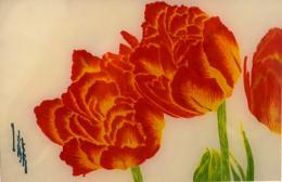 草と花のカタチ(botaniko press ・ 瀧谷美香)_d0263815_15344828.jpg